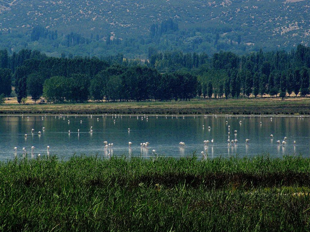 yarışlı gölü 2